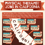 Physical Therapist Jobs Infographic