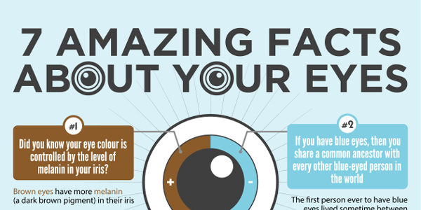 7 Incredible Eye Facts