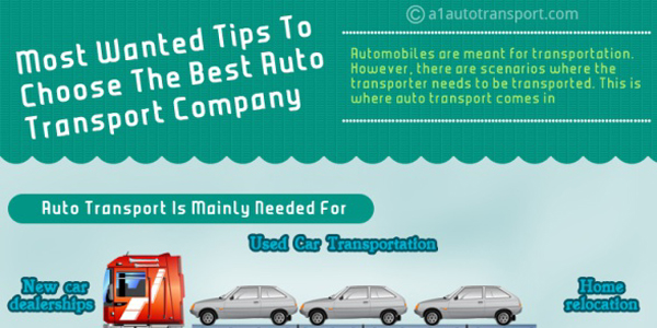 Infographic on Choosing A Transport Company