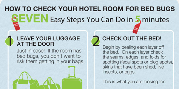 How To Check Your Hotel Room For Bed Bugs Infographix