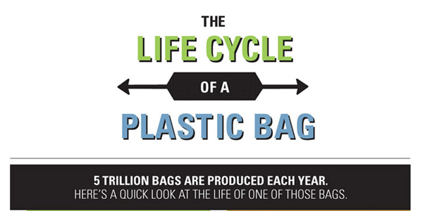 How Resuable Bags Will Replace Plastic Bags Infographic