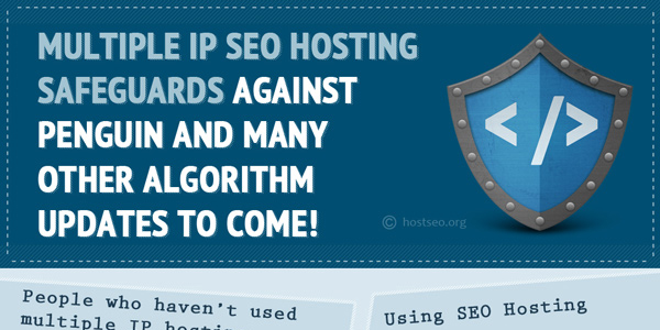 Infogaphic on Benefits of Multiple IP SEO Hosting