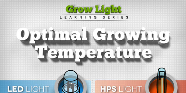 Infographic on the Best Growing Lights