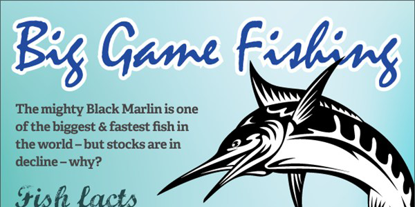 The Decline of the Black Marlin Infographic