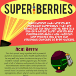 4 Super Food Berries