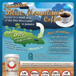 Flavors of Jamaican Blue Coffee Infographic