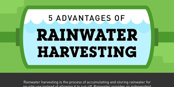 5 Benefits of Rainwater Harvesting
