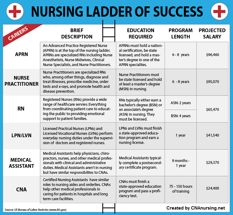 Nursing Ladder of Success [Infographic] – Infographix ...