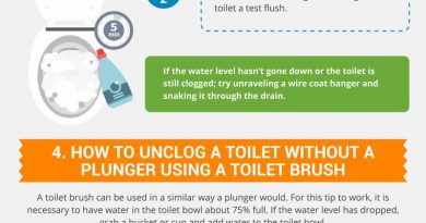 6 Ways to Unclog a Toilet Without a Plunger or a Plumber