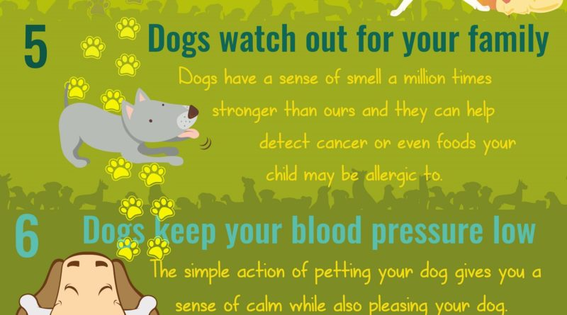 How Dogs Make You and Your Family Healthier