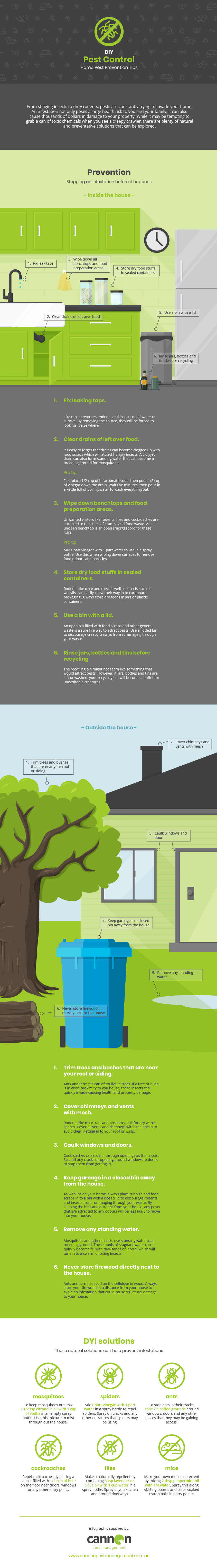 Cannon Pest Management - DYI Pest Infographic